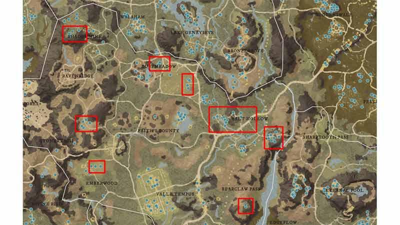 new world everfall salt locations